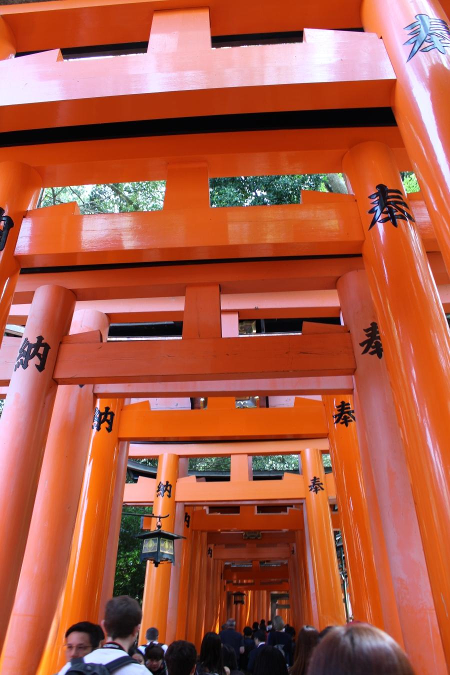 family travel to Fushimi Inari-taisha