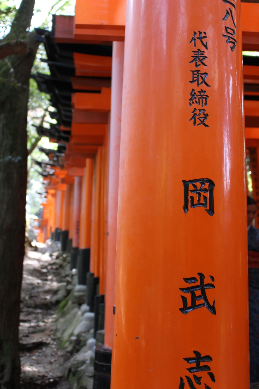 view of torii gates at Fushimi Inari-taisha