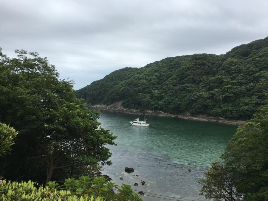 Japan Coastline